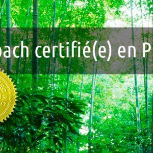 Coach Professionnel(le) Certifié(e) En PNL