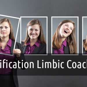 Certification Limbic Coaching