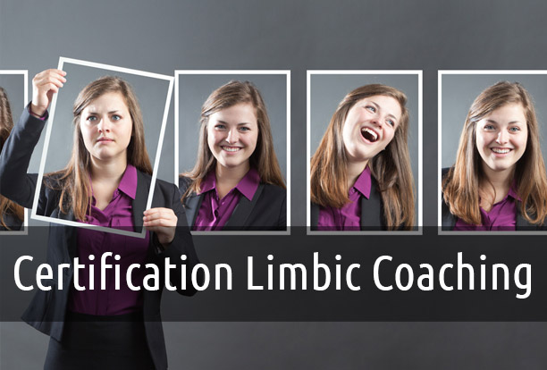 Limbic Coaching