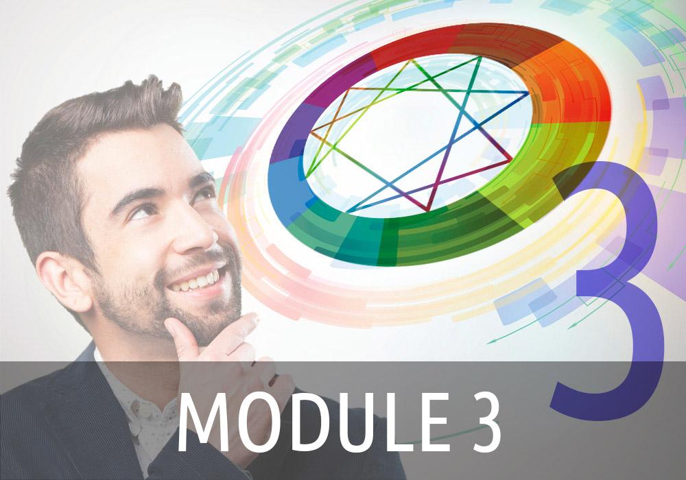 Ennéagramme Module 3 : Sous-types : Maximiser Ses Ressources